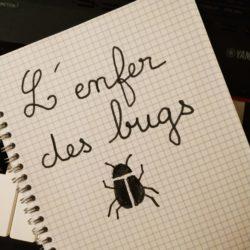l'enfer des bugs